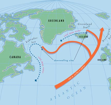 Atlantic Monthly's circular illustration of North Atlantic's currents and downwelling sites