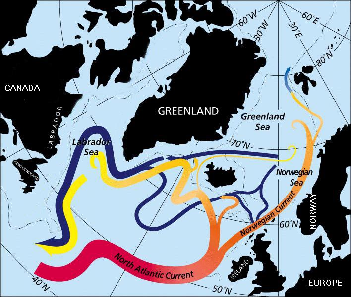 The North Atlantic Current (modified from OCEANUS Fall/winter 1996) showing the warm surface currents (red-to-yellow as they lose heat) and the cold deep currents formed in the Greenland and Labrador Seas by the flushing of surface waters.